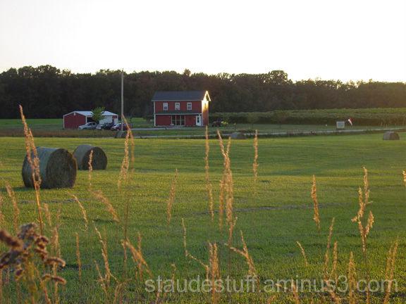 Rolling meadows
