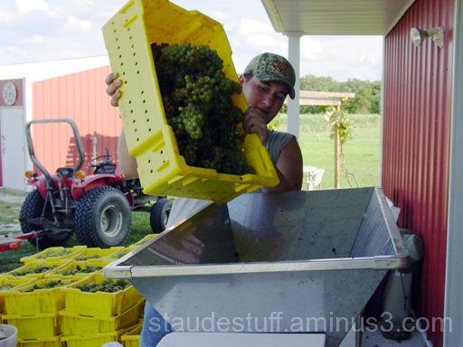 harvest zack
