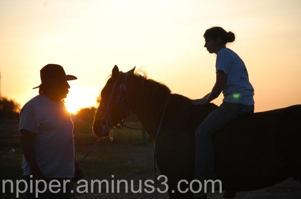 Riding a half broken horse