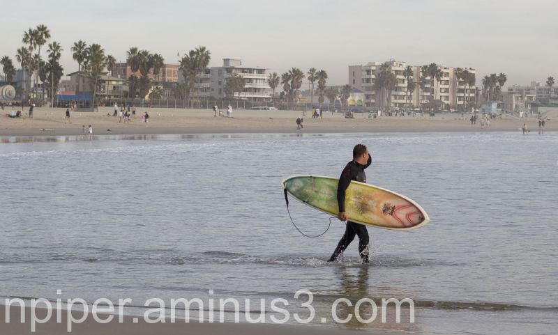 Man heading out to surf in Venice CA
