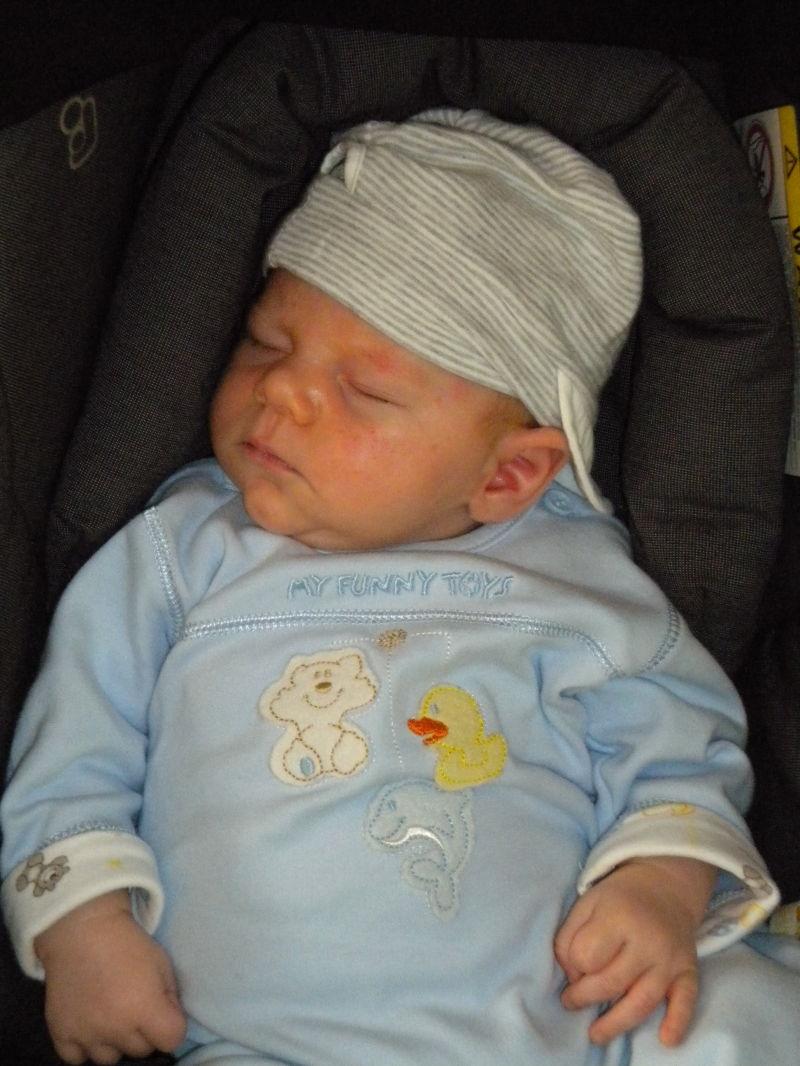 Lennox - 6 Wochen alt