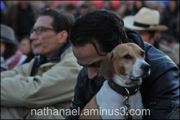 People and dog...