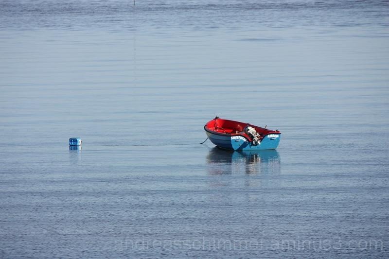 Amrum Meer mit Boot