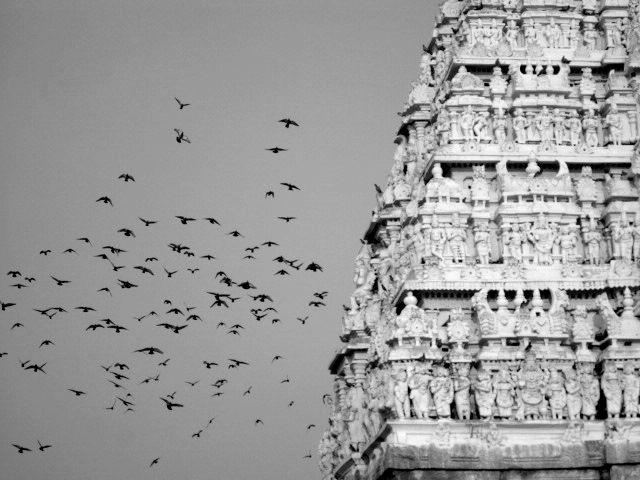 Feet of the Jain