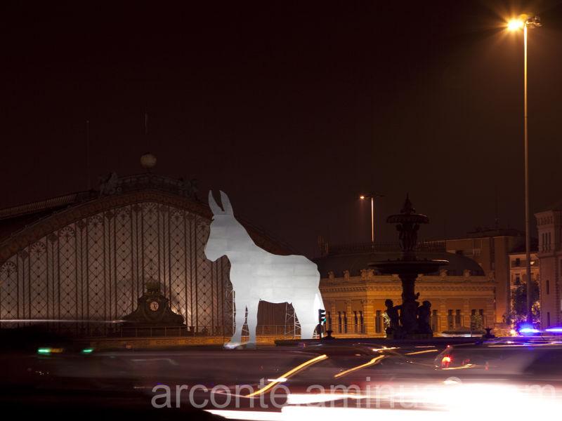 A donkey in Atocha