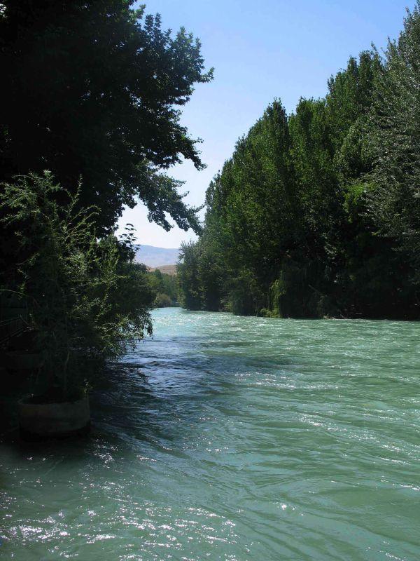 رود و جنگل