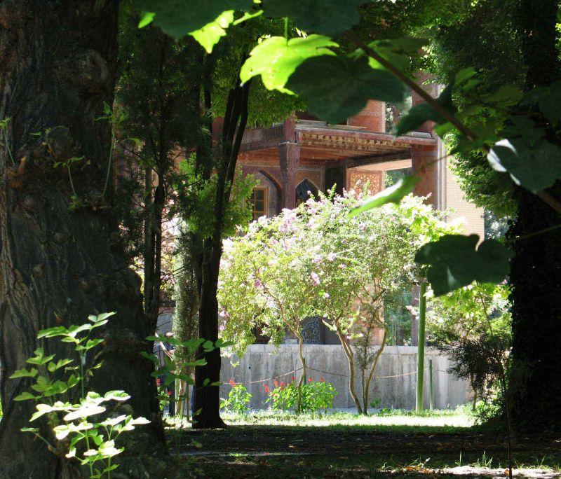 ای درخت