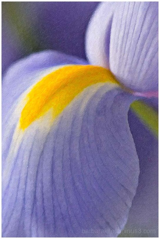 iris painted with Alien SnapArt2