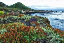 Big Sur colors and coastline