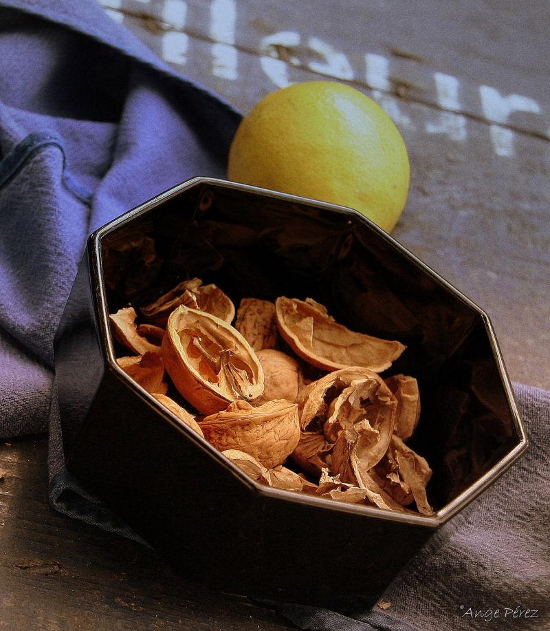 Nature morte aux coquilles de noix