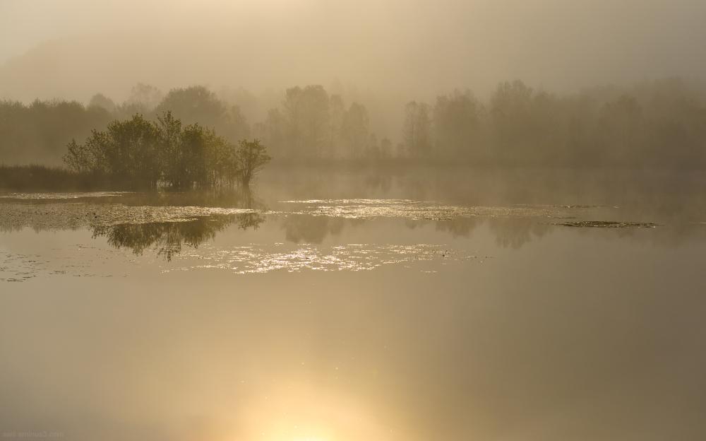 Lac de Peyrelevade