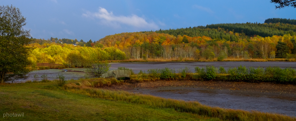 L'automne du plan d'eau de Peyrelevade à sec