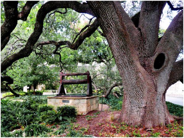 The Well at the Alamo, San Antonio, Texas