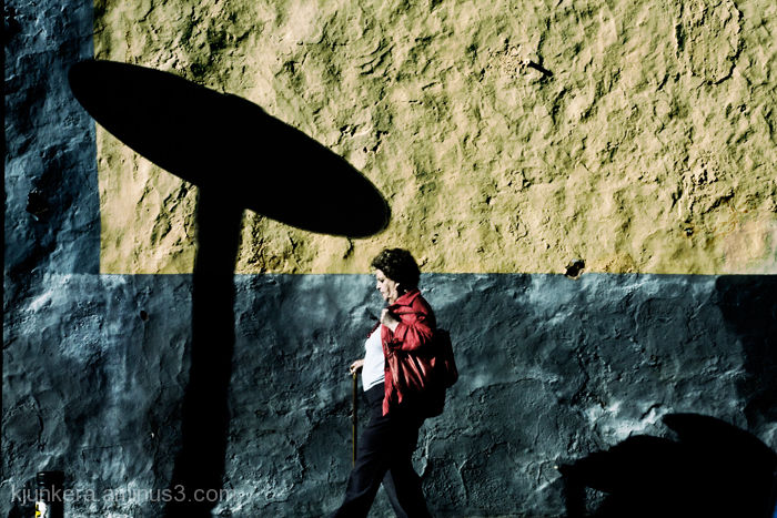Señora entre sombras