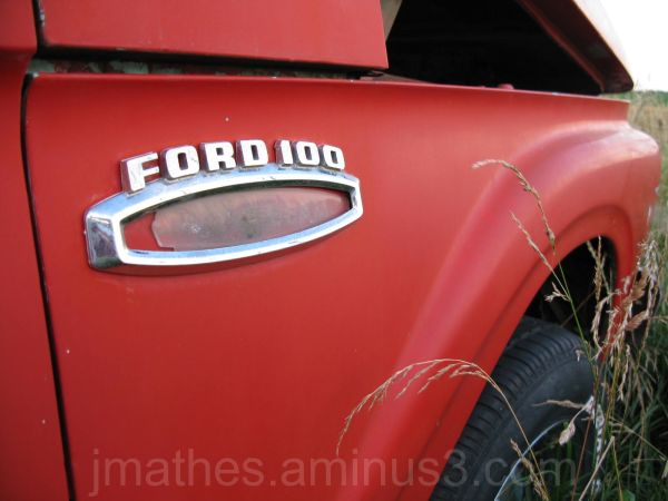 Ford 100