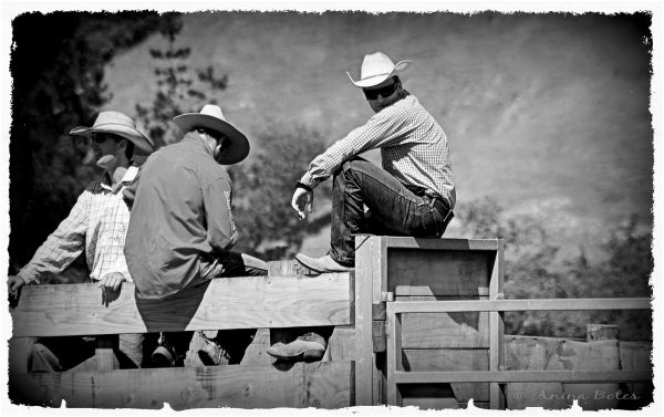 Huntley Rodeo Cowboys B&W