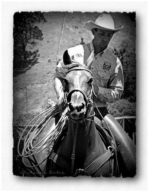 Cowboy, Horse, Rodeo, B&W