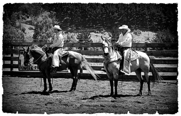 Cowboys Rodeo
