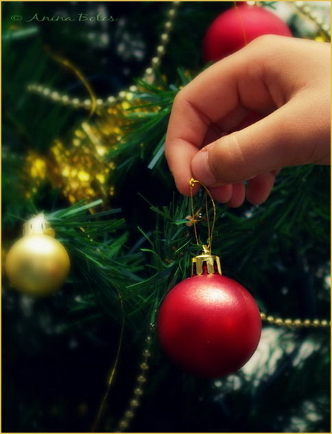 Decorating, Christmas, Tree