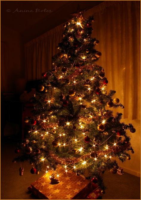 Christmas tree lights silent night