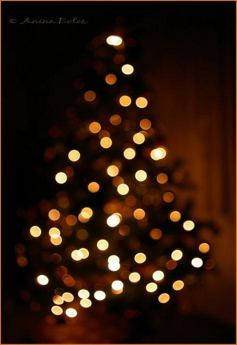 Merry Christmas, lights, decorations