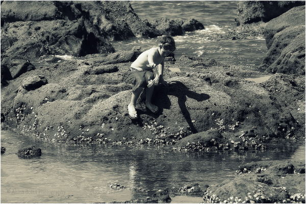 Boy, Rocks, Beach, Sepia
