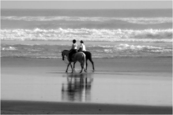 Beach, horse riding, B&W