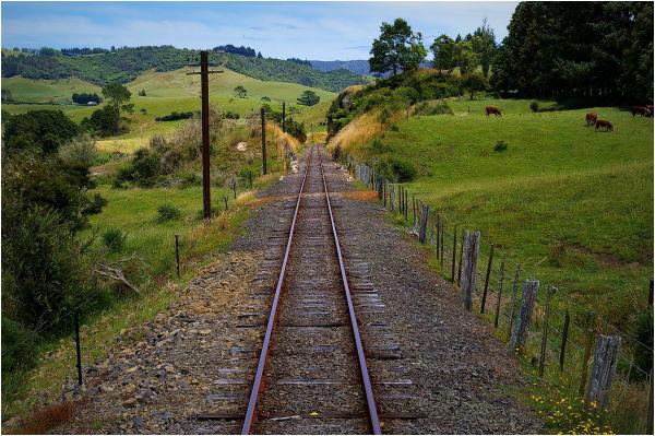 Steam Train Ride, Goldfields, Farmland, Green, NZ