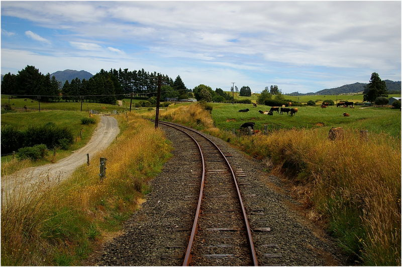Steam Train Ride, Goldfields, Farmland, Green, NZ