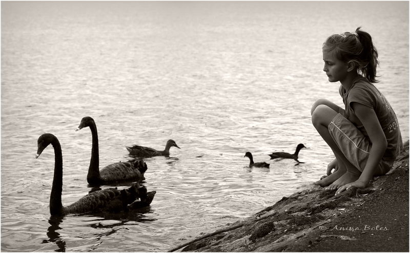 Anja, girl, swans, ducks, lake, sepia