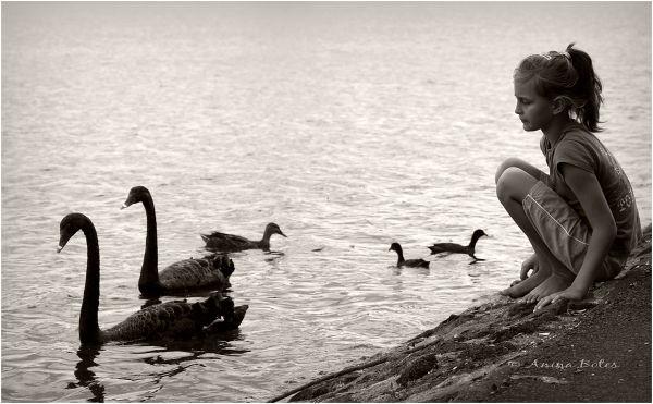 Anja, girl, swans, ducks, lake, sepia