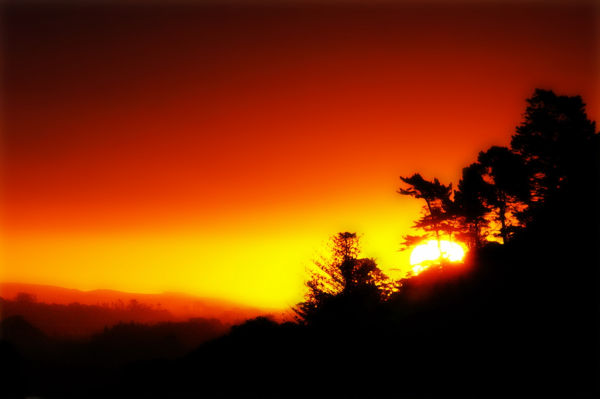 Sunset, Orange, Red, Yellow, Silhouettes, NZ