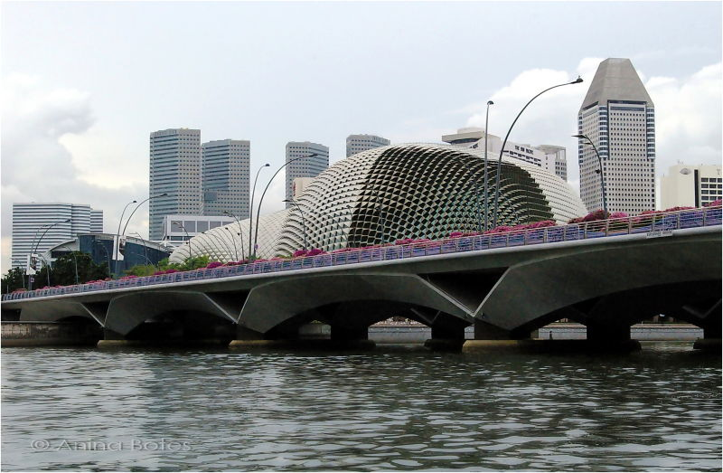 Singapore River, Bridge, Architecture