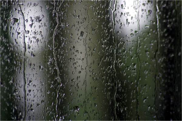 Rain, drops, window, winter, NZ