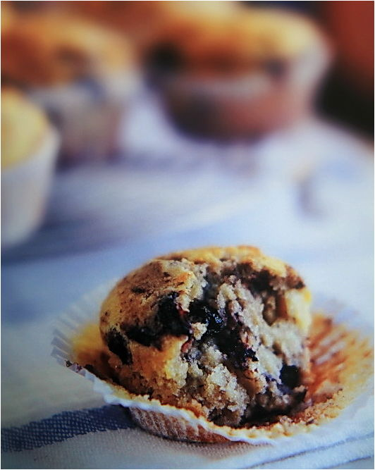 Blue Berry Muffin, Close-up, Color, NZ