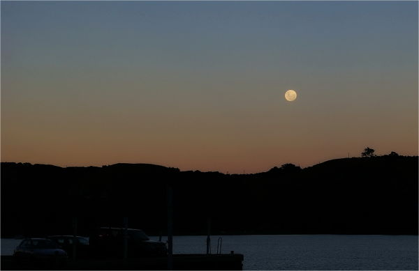 Twilight, Moon, Silhouettes, NZ
