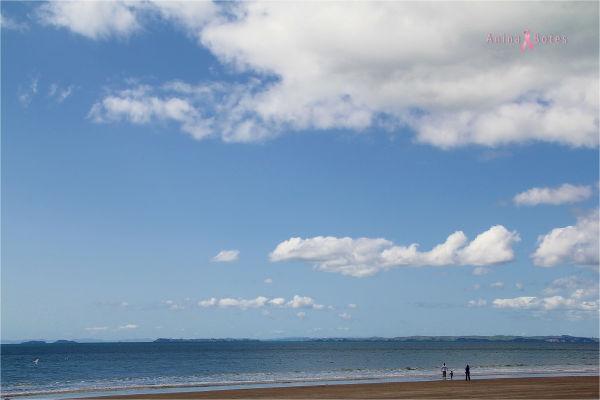 Longbay Beach, NZ
