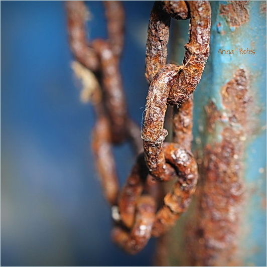 Rust, Chain, Macro, 50mm, Sigma
