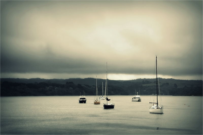 Ohope, Wharf, NZ