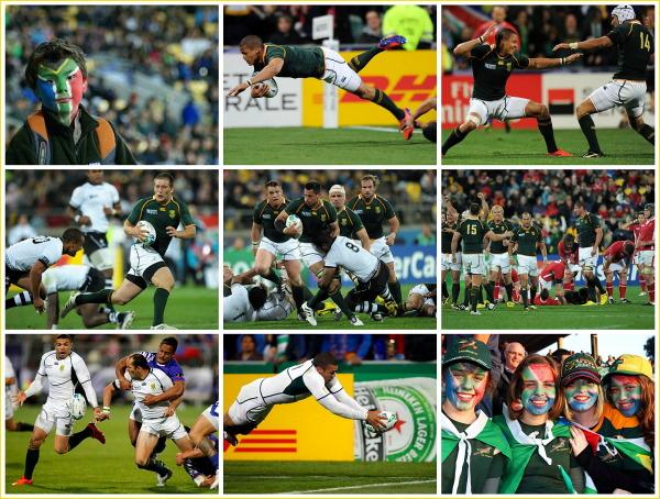 RSA, Springbok, rugby
