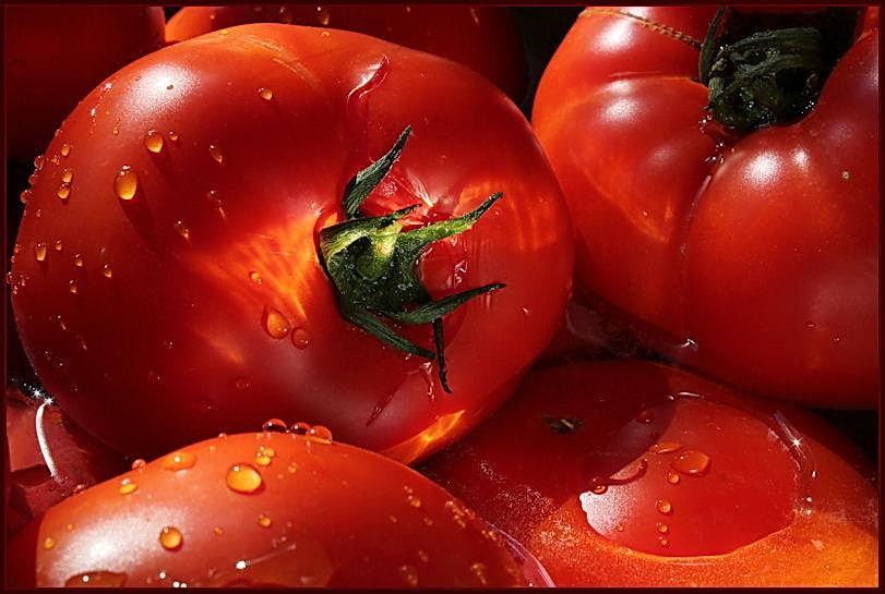 tomatoes, red