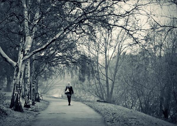 winter, spotlight