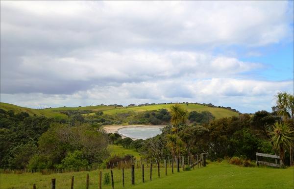 landscape, spring, NZ, new-zealand, 6D