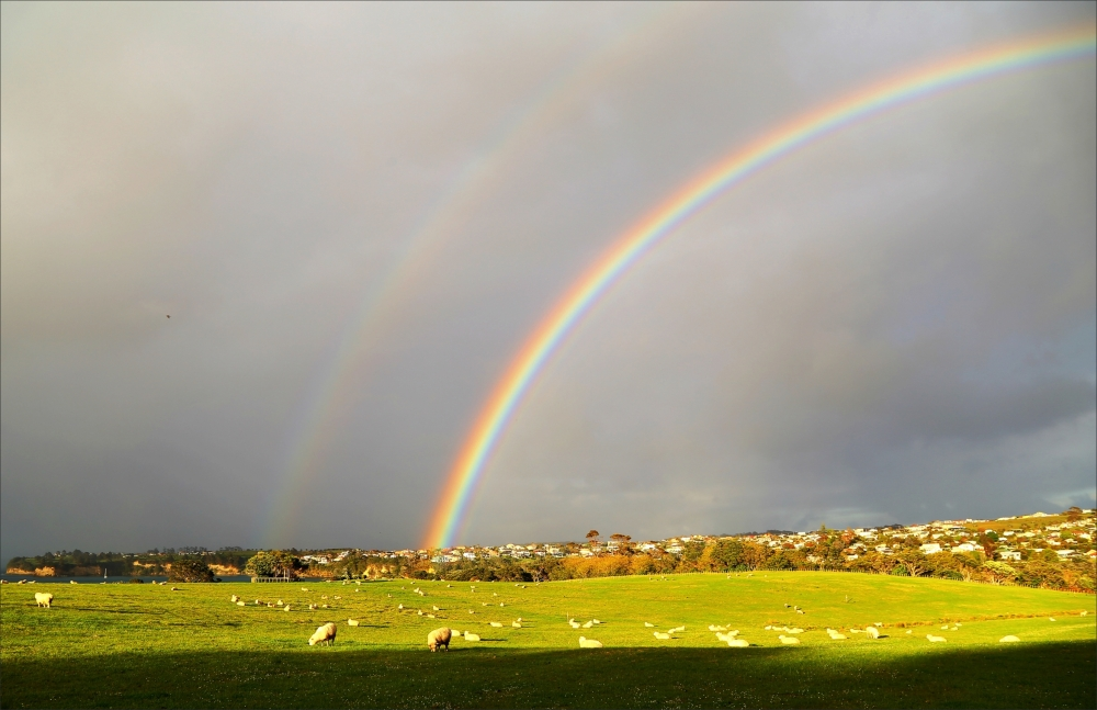 rainbow, landscape, spring, NZ, new-zealand, 6D