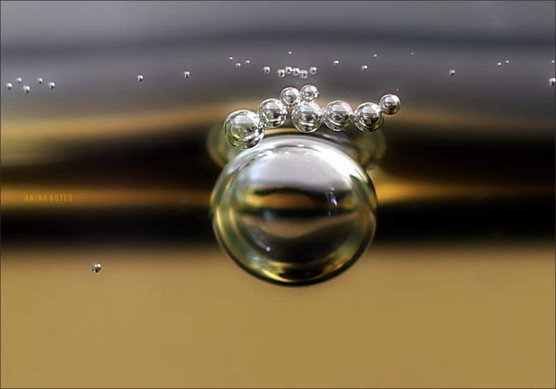bubbles, macro, 50mm