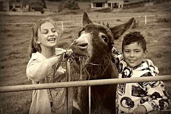 Anja, MJ, children, donkey, sepia