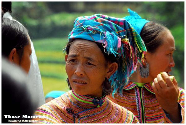Flower Hmong 03