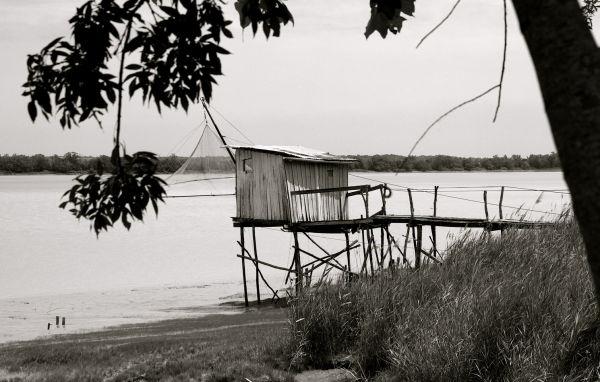 L'estuaire