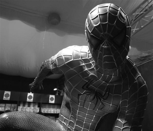 L'Homme araignée