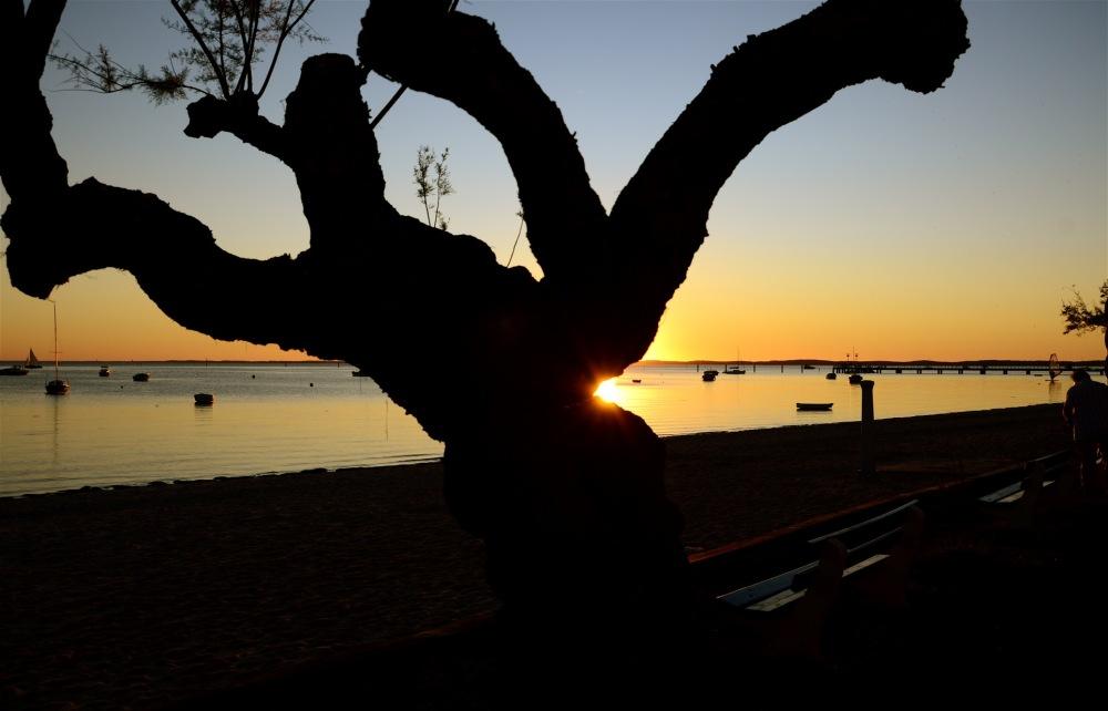 La morsure du soleil